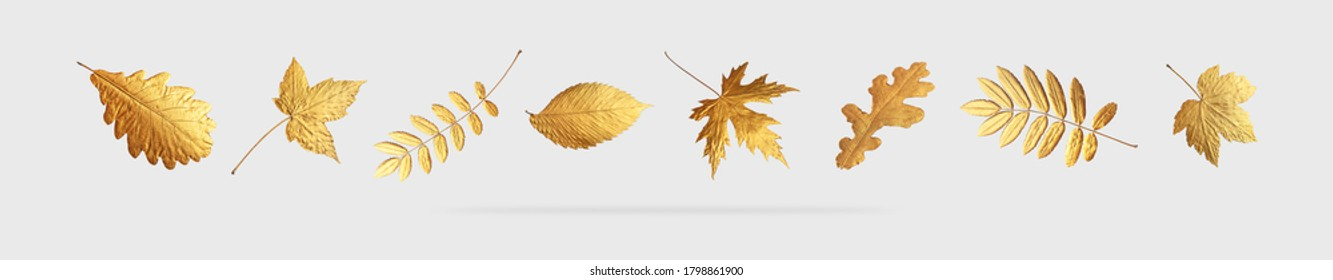 Golden flying autumn leaves of different shapes on light gray background. Autumn concept, fall background. Minimal floral design, autumn leaf frame. Golden twig. Autumn creative composition. Banner