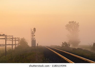 A golden but foggy sunrise over railroad tracks, with telegraph poles, signals and trees