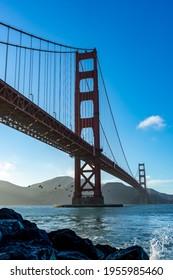 Pont de Golden Gate avec Pélicans volants