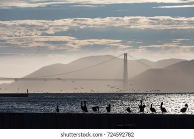 The Golden gate bridge in San Francisco at sunset