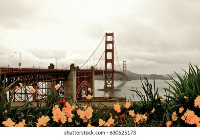 GOLDEN GATE SPRING FLOWERS