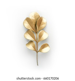 golden and green leaf design elements. Decoration elements for invitation, wedding cards, valentines day, greeting cards. Isolated on white background.
