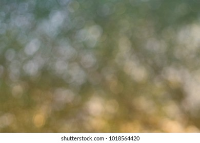 Golden, Green and White Bokeh Background.