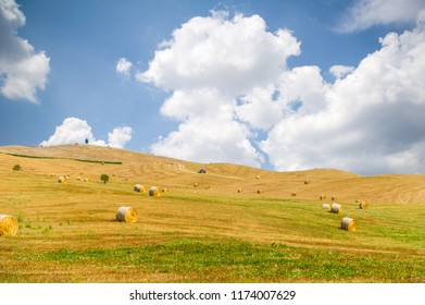 Golden hay bales on a field in Tuscany.