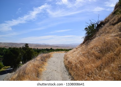 Golden hills of Kern County, beautiful place with plenty of trails to explore is Hart Memorial Park, Bakersfield, CA.