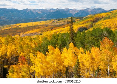 Golden Hills at Ohio Pass near Crested Butte Colorado