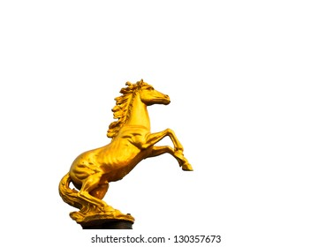 golden horse with white background