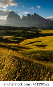 Golden Hour at Alpe Di Suisi, Dolomites, Italy