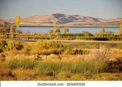 The golden hour decends on a fall afternoon in Washoe Valley, Northern Nevada between Reno and Carson City. A view of Washoe Lake, a distant mountain range, wetlands and desert sage brush.