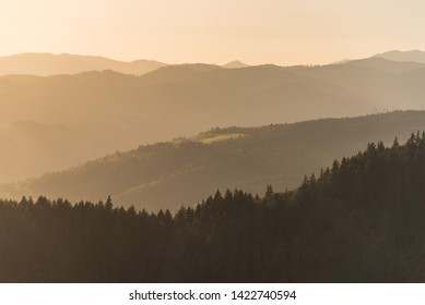 Golden hour light marinates layers of forested hills and mountains in the Pacific Northwest