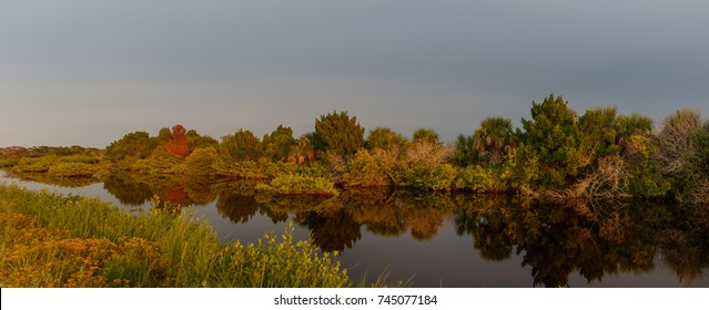 Golden Hour at Merritt Island National Wildlife Refuge, Florida, USA