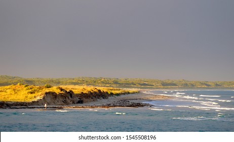 Golden hour with sunlight on small sand hills, at the edge of the ocean, with a solitary person walking in the distance. Afternoon sun captured on lime green grass, and on the white waves of the sea.