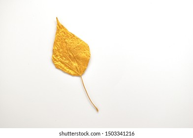 Golden isolated autumn leaf of a tree on a white background. Decoration element for card, invantion, wedding