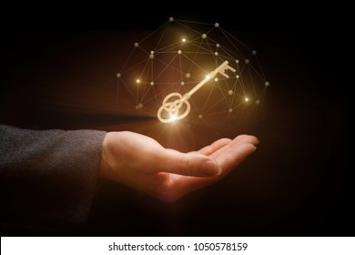Golden key in the hand of network. Network is the key to success.