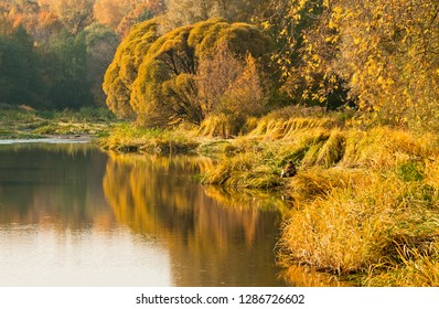 A golden landscape of autumn with a fishman on the lake