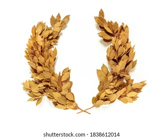Golden laurel wreath isolated on white background. A laurel branch is a symbol of glory, victory or peace. Antique times. laurel wreath was an award to the winner, and it was also awarded to the