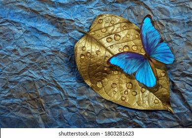 Golden leaf in drops of water and bright tropical morpho butterfly on a blue watercolor background