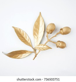 golden leaf and fruit design elements. Decoration elements for invitation, wedding cards, valentines day, greeting cards. Isolated on white background.