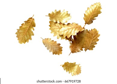 Golden leaf on white background with copy space