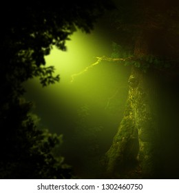 Golden light in dark forest with old hollowed tree and leaves silhouettes