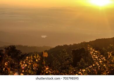 Golden light on the mountain