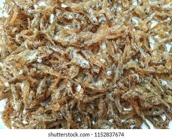 Golden Minnow fish fry background.
