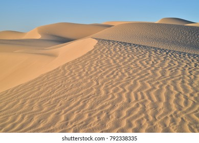 Golden morning light illuminates the sand dunes, natural patterns, ripples, and tire tracks in the sand from ATV recreational off road vehicles at Imperial Sand Dunes, California, USA