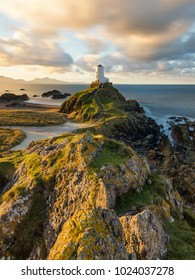 Golden morning light on rocks at Llanddwyn Lighthouse on the Anglesey Coast, Wales, UK.