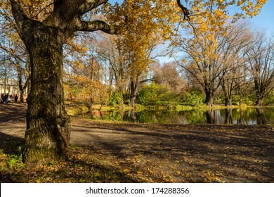 Golden oaks and pond in Bolshoe Boldino, Russia