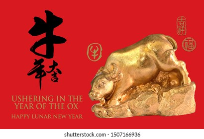 Golden ox isolated on red background with chinese calligraphy, Translation: year of the ox brings prosperity & good fortune. Ushering in the year of the ox. Happy Lunar New Year.