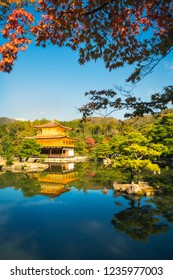 The Golden Pavilion or Kinkaku-ji Temple with reflections in the water and red maple leaves in the foreground, Kyoto, Japan.