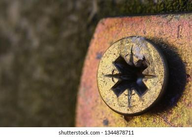golden pozidriv head, PZ screw close up macro shot with copy space