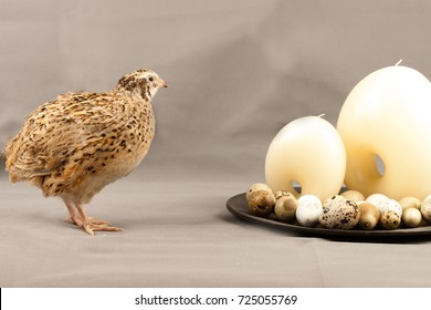 A golden quail next to two candles and eggs