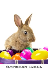 Golden rabbit with a basket of colored Easter eggs against white background.