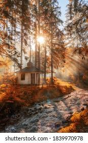 Des rayons dorés du soleil d'automne tombent à travers un arbre dans une forêt. Petite chapelle dans la forêt d'automne
