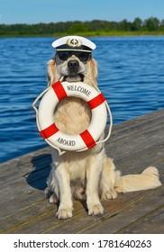 Ein goldener Retriever mit Kapitänhut und schwarzer Sonnenbrille liegt am See und hat ein Lifebuy im Mund