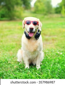 Golden Retriever dog in sunglasses with headphones listens to music sitting on grass