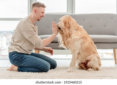 Golden retriever high five to his owner sitting on the floor. Blond guy with cute doggy in light interior