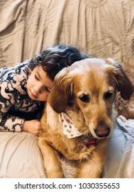 Golden retriever with a little girl