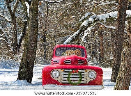 Golden Retrievers Antique Red Truck Christmas Stock Photo (Edit Now ... ddeff4ca756c