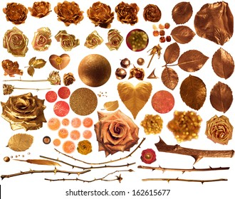 golden roses collection, with real roses, studio photographed in partially liquid gold, rose leaves and stalks, glittered shapes and textures, isolated on white, comes with clipping paths
