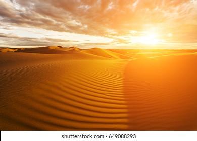 Golden sands and dunes of the desert. Mongolia.