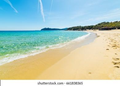 Golden shore in Cala Monte Turno. Sardinia, Italy