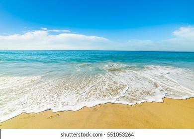 golden shore in Pacific Beach, California