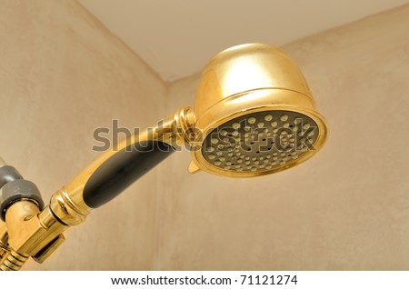 Golden shower head