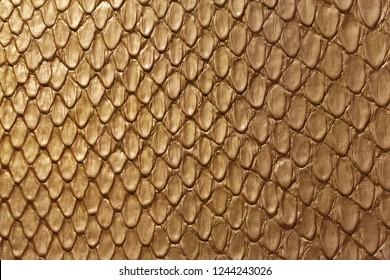 Golden Snake Skin Fashion Leather Texture Background