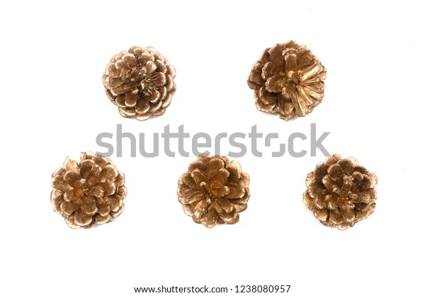 Golden spruce cones isolated on the white background.