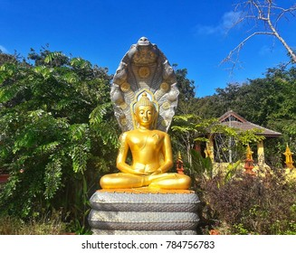 Golden statue with serpant in Lampang Thailand