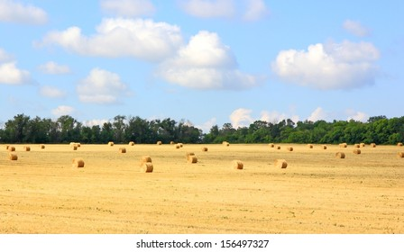 Golden straw bales on a wheat field