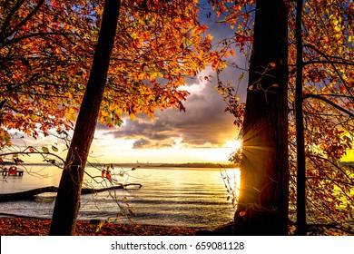 Golden sunlight falls on the banks of Lake Washington